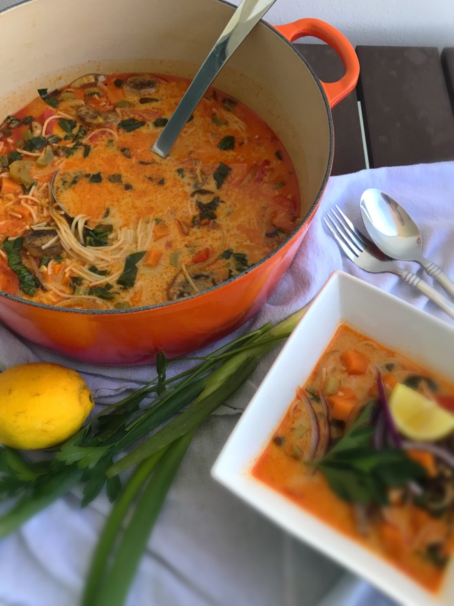red curry thai soup4