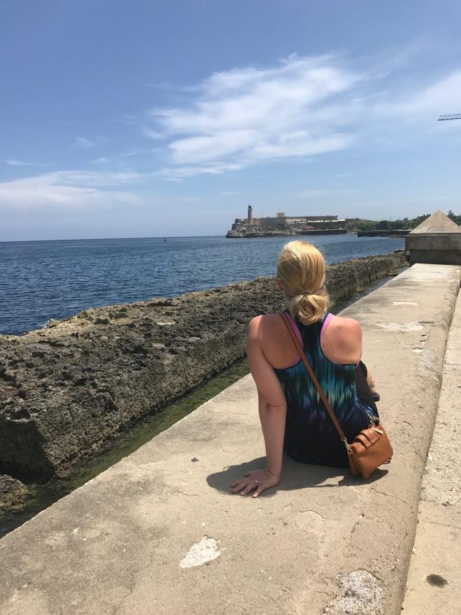 sea wall2